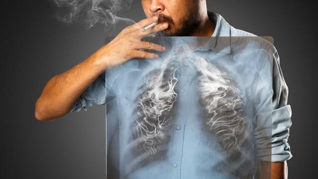 Tütün Sektörü Kan Kaybediyor !